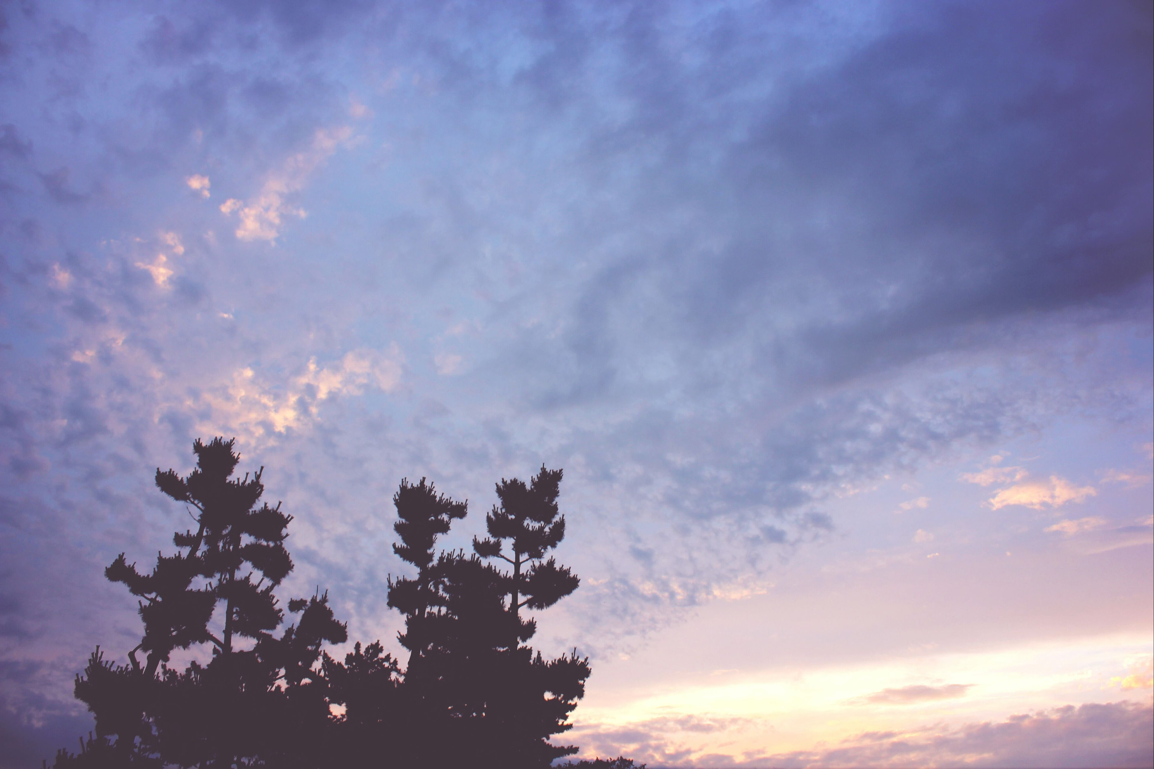 sky, low angle view, cloud - sky, silhouette, beauty in nature, tranquility, tree, cloudy, sunset, scenics, nature, tranquil scene, cloud, dramatic sky, idyllic, outdoors, cloudscape, no people, weather, dusk