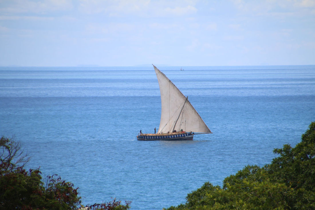 A fishing dhow is a clear blue sea Cloud - Sky Day Dhow Horizon Over Water Nature Nautical Vessel No People Outdoors Sailboat Sailing Sailing Ship Scenics Sea Sky Travel Water Yacht Yachting