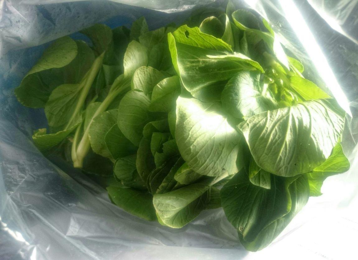 Vegetables Brasicaceae Food Food Photography Veggies Stirfryveggies Green Color Green Leaves