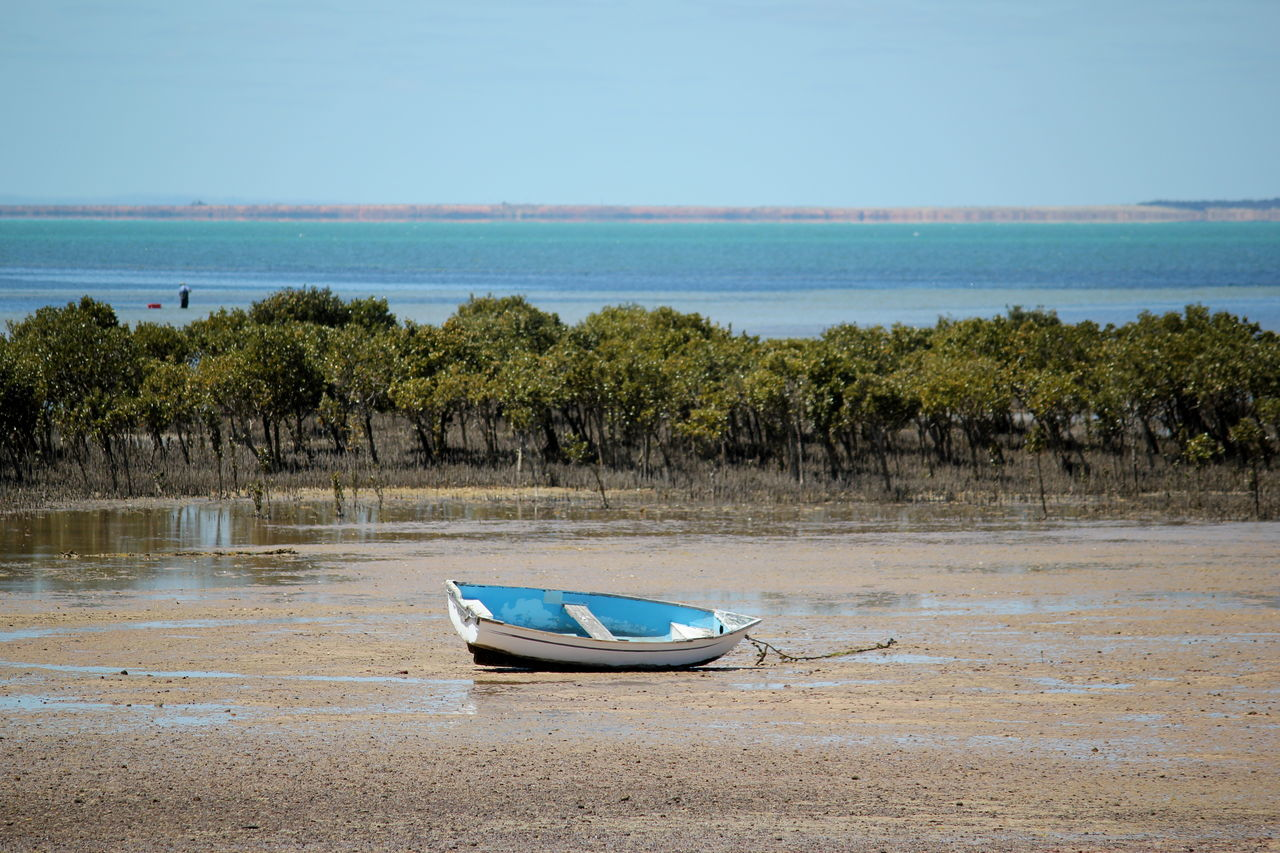 Sea Water Nature Horizon Over Water Blue Tranquility Scenics Beach Beauty In Nature Sky Day Nautical Vessel Tree Outdoors Clear Sky No People Tranquil Scene Adelaide, South Australia Boat Mangroves