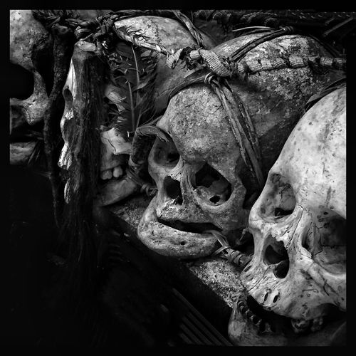 When we're together I See Black And White Ripley's Black And White Photography Throughmyeyez Blackandwhite Skulls Bones Vintage Only In Black And White