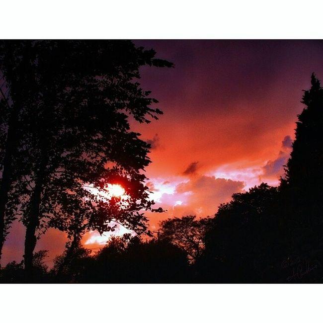 """Golden Hour"" July 2012 ☮"