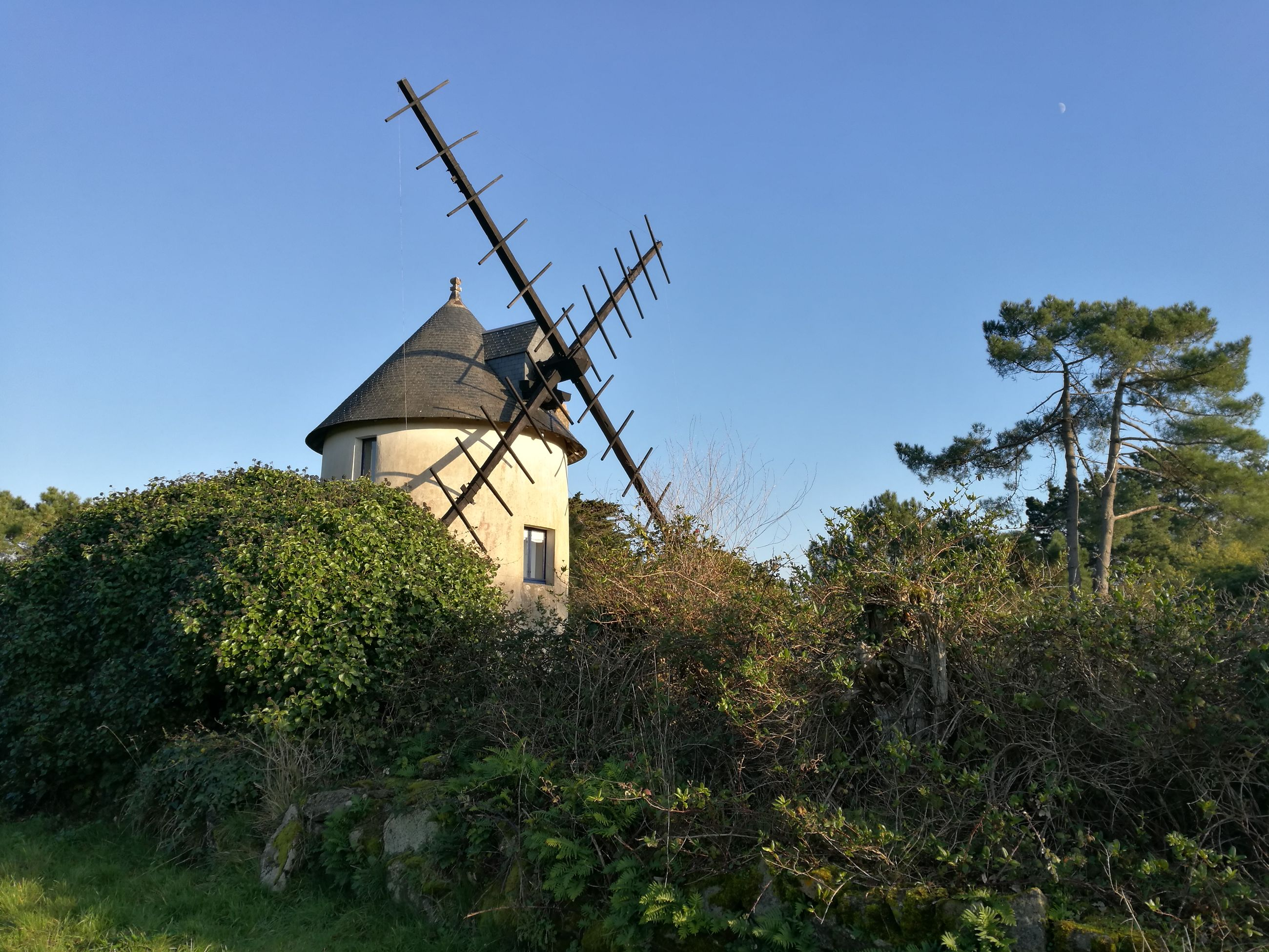 windmill, alternative energy, environmental conservation, wind power, built structure, fuel and power generation, renewable energy, clear sky, tree, traditional windmill, wind turbine, low angle view, architecture, building exterior, rural scene, no people, nature, house, outdoors, water wheel, day, sky