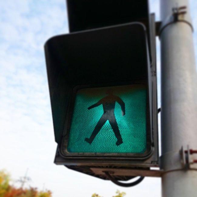 푸른신호등만 켜지면 좋겠다 신호등 청신호 땡땡이