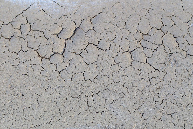 Dried up and cracked sediment after flooding. Abstract Arid Background Background Texture Backgrounds Barren Catastrophe Close-up Cracked Deterioration Dirty Dried Drought Dry Earth Maximum Closeness Color Palette Full Frame In Need Infertility Natural Pattern Scarceness Sediment Soil Textured
