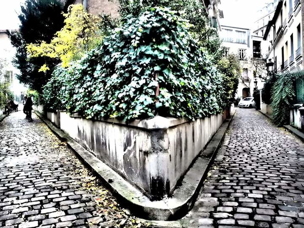 Paris Sentier Fantastique