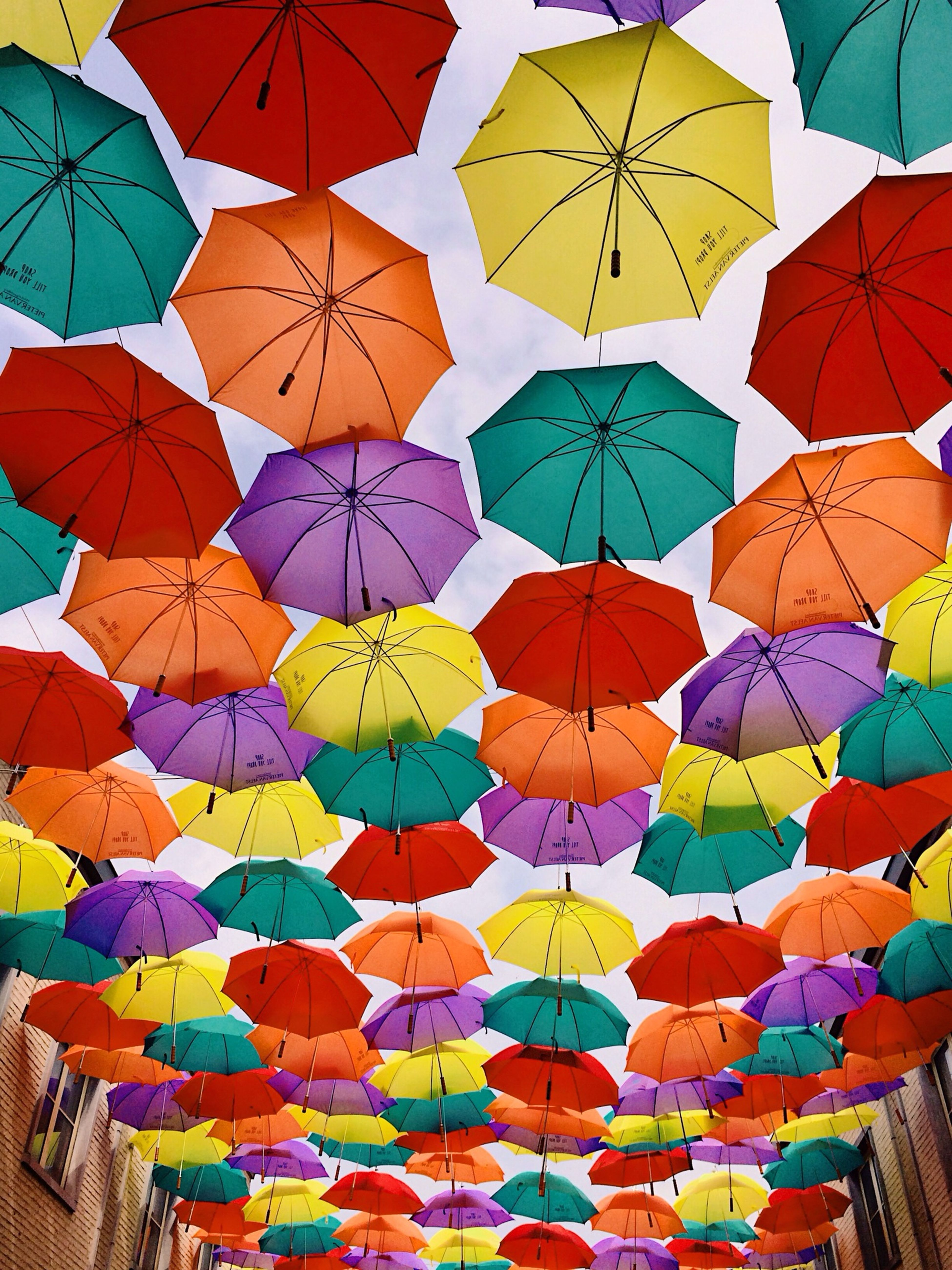 Umbrella Heaven (shot & processed entirely with the iPhone 5S) Iphoneonly IPhoneography Iphonesia Iphonephotography