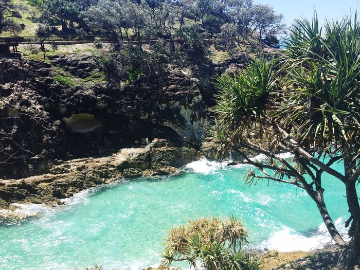 On Vacation in Australia Queensland Stradbroke Island Coastal Walk Nature Ocean Ocean View Beach