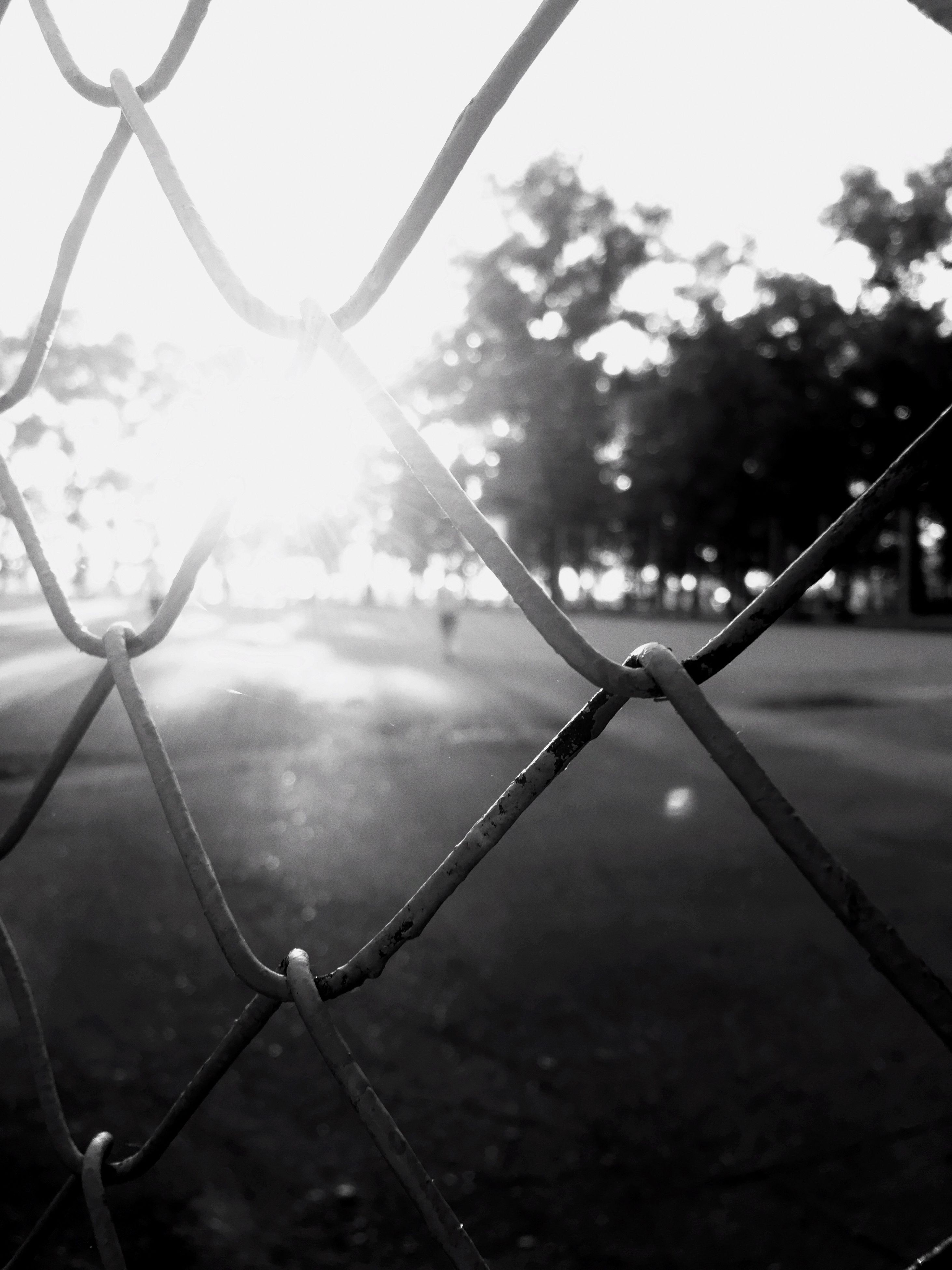 chainlink fence, metal, protection, safety, outdoors, no people, focus on foreground, day, sky, close-up, nature, clear sky, city