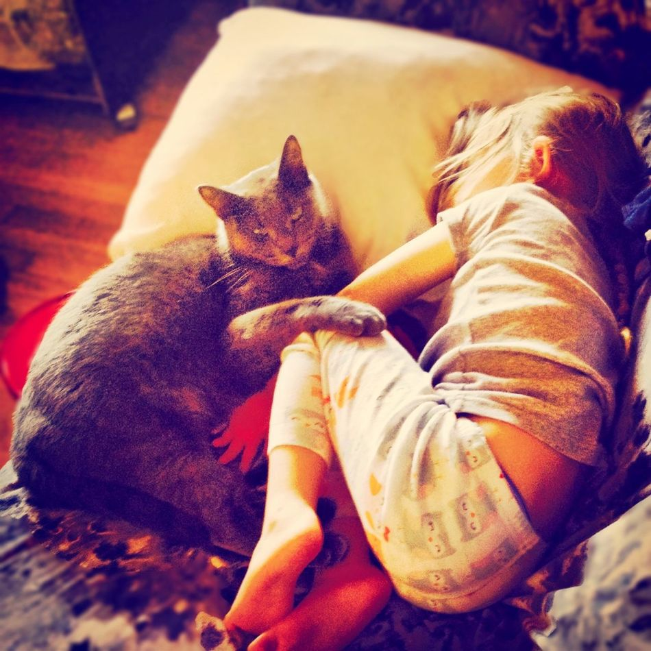 Cat PusspussLove Baby Cute