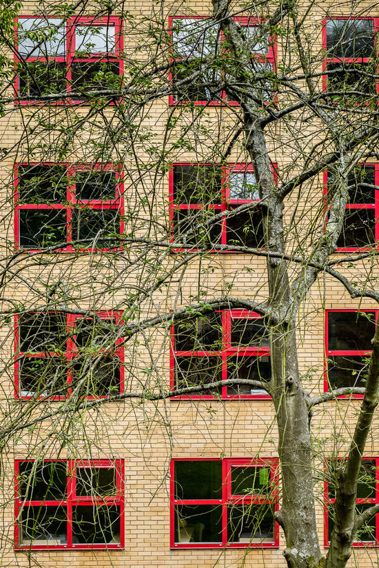 Architecture Backgrounds Brick Wall Building Exterior Built Structure Day Façade Full Frame No People Outdoors Red Residential Building Student Accommodation Tree University Campus Unversity