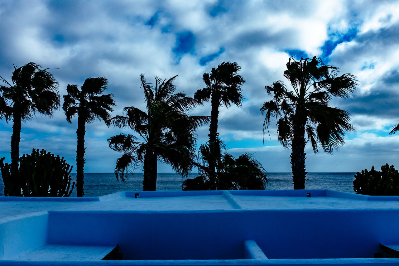 palm tree, tree, sky, swimming pool, cloud - sky, tranquility, beauty in nature, tree trunk, scenics, nature, outdoors, tranquil scene, tourist resort, no people, water, growth, blue, sea, day