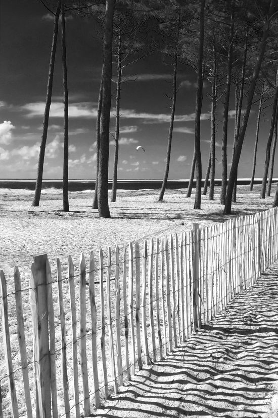 Beach Beauty In Nature Blackandwhite Calm Clouds Coastline Day Fence Monochrome Nature Ocean Outdoors Paragliding Sea Shadow Shadows Sky Sport Sunset Tranquility Trees Water Wave Wooden Wooden Post