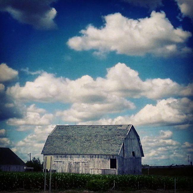 Old gray barn Ruraldecay Farmporn Landscape Ruraldamerica farmcountry rurex trb_members1 weathered crops field ohio