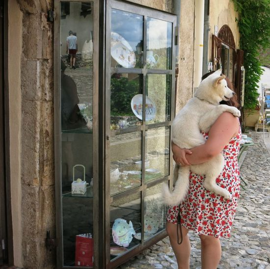 Carry Me Home Dog Easy Way France Husky No Walking Real People True Love
