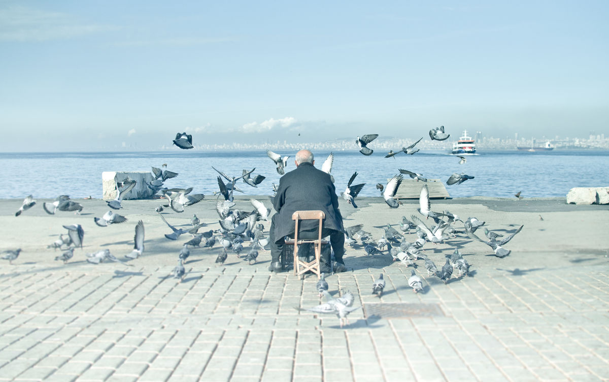 Old Man and the City Adult Adults Only Beauty In Nature Birds Chair City Day Horizon Over Water Men Nature Old Man One Person Only Men Outdoors Prince Islands Reflection Scenics Sea Senescence Sky Turkey Water First Eyeem Photo
