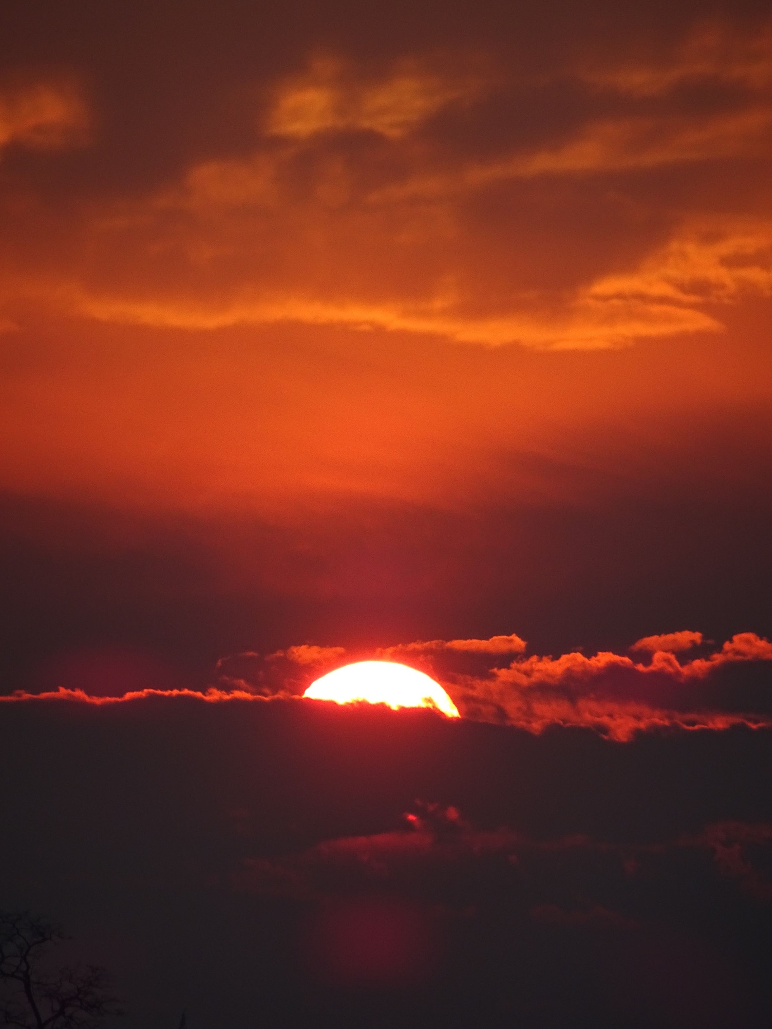 sunset, orange color, sky, beauty in nature, scenics, tranquility, silhouette, sun, tranquil scene, cloud - sky, idyllic, nature, dramatic sky, low angle view, majestic, cloud, outdoors, cloudy, atmospheric mood, no people