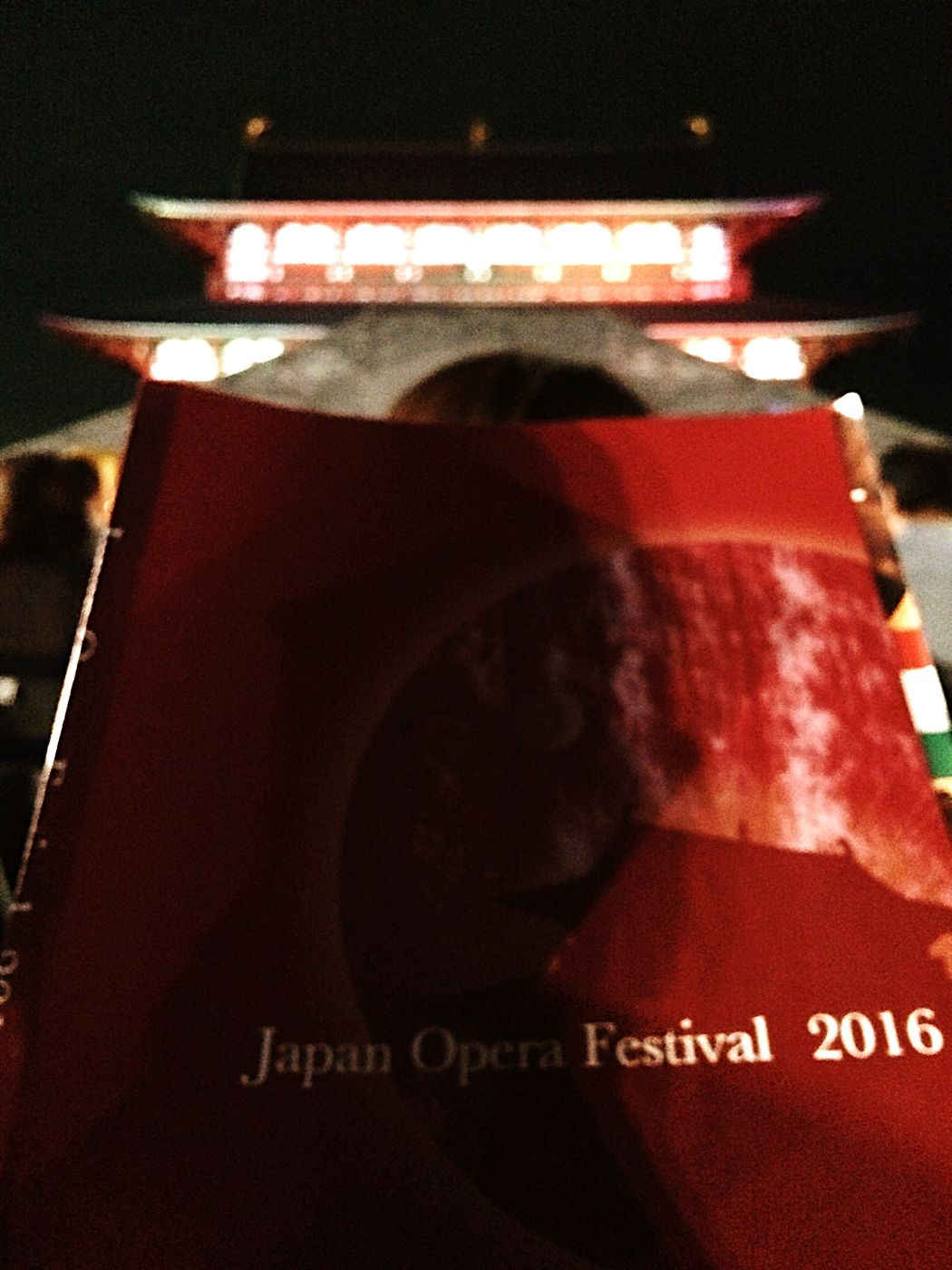 Japanoperafestival IPhoneography Heijyoukyou Close-up Focus On Foreground The Past No People Symbol 平城宮 Nara Opéra