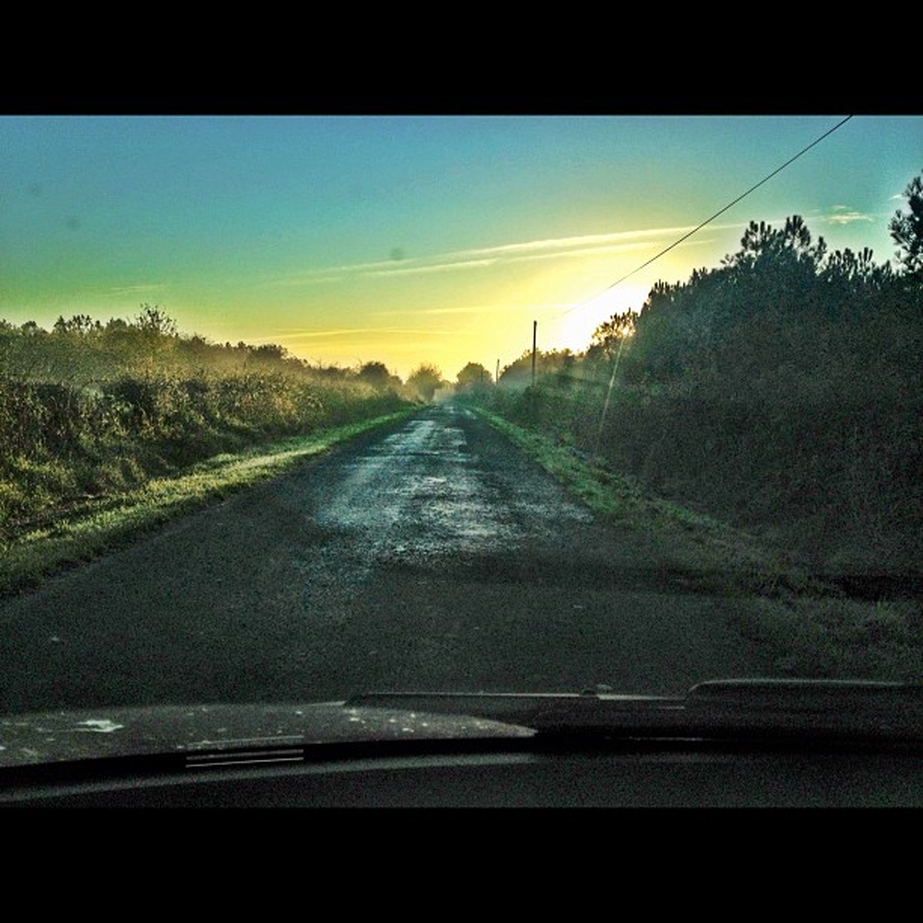 transportation, sky, sunset, road, tree, the way forward, diminishing perspective, car, tranquil scene, landscape, vehicle interior, mode of transport, nature, land vehicle, water, vanishing point, cloud - sky, tranquility, scenics, travel