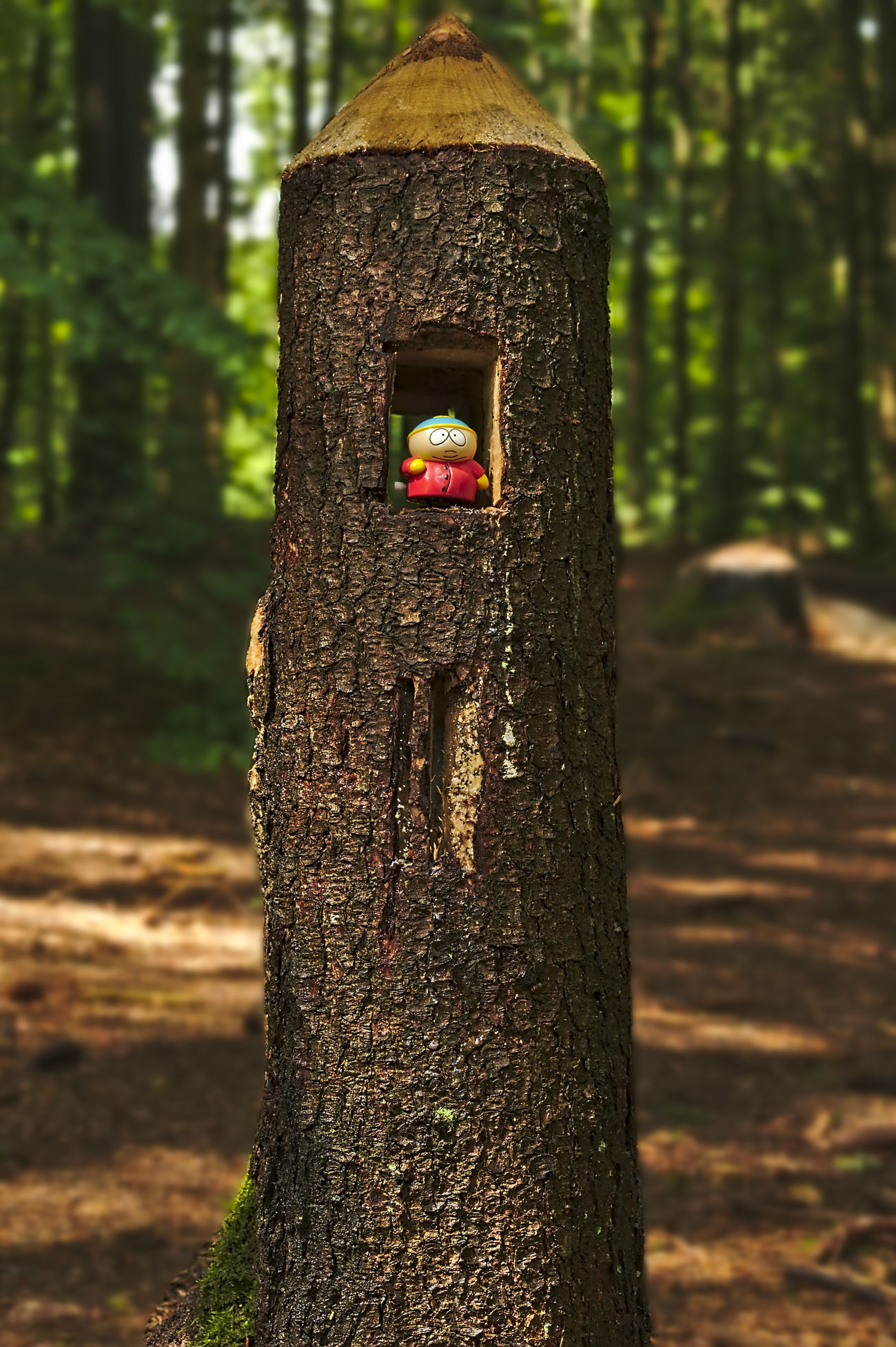 The Round Tower Bark Texture Best Friends Brown Cartman Close-up Eric Cartman Figurine In Nature Focus On Foreground Green In The Forest In The Wood Light And Shadow Nikon Outdoors Selective Focus Southpark Structure And Nature Talking Pictures Toy Adventures Toy Story Tree Trunk Tree Trunk Wood - Material Wood Art Wood Carving