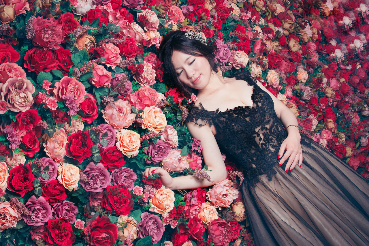 Beautiful stock photos of roses, 30-34 Years, Asian, Flower, Flowerbed