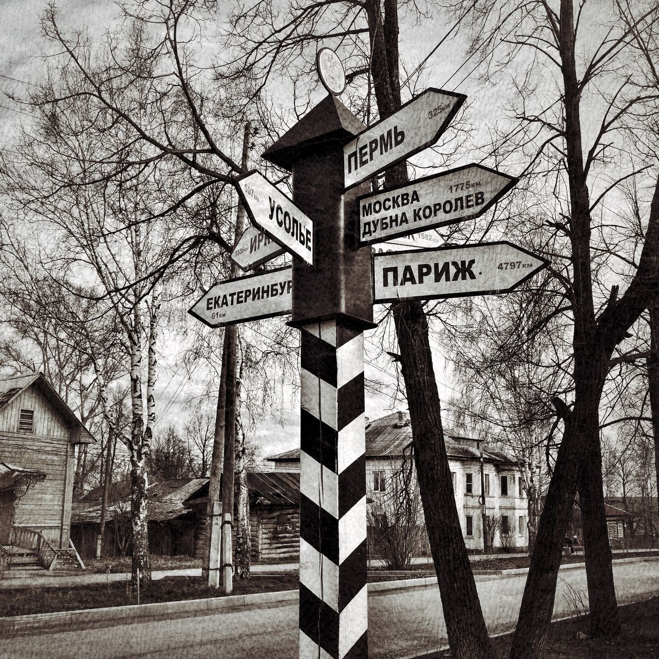 bare tree, tree, text, communication, guidance, day, no people, outdoors, architecture, built structure, road sign, building exterior, sky, close-up