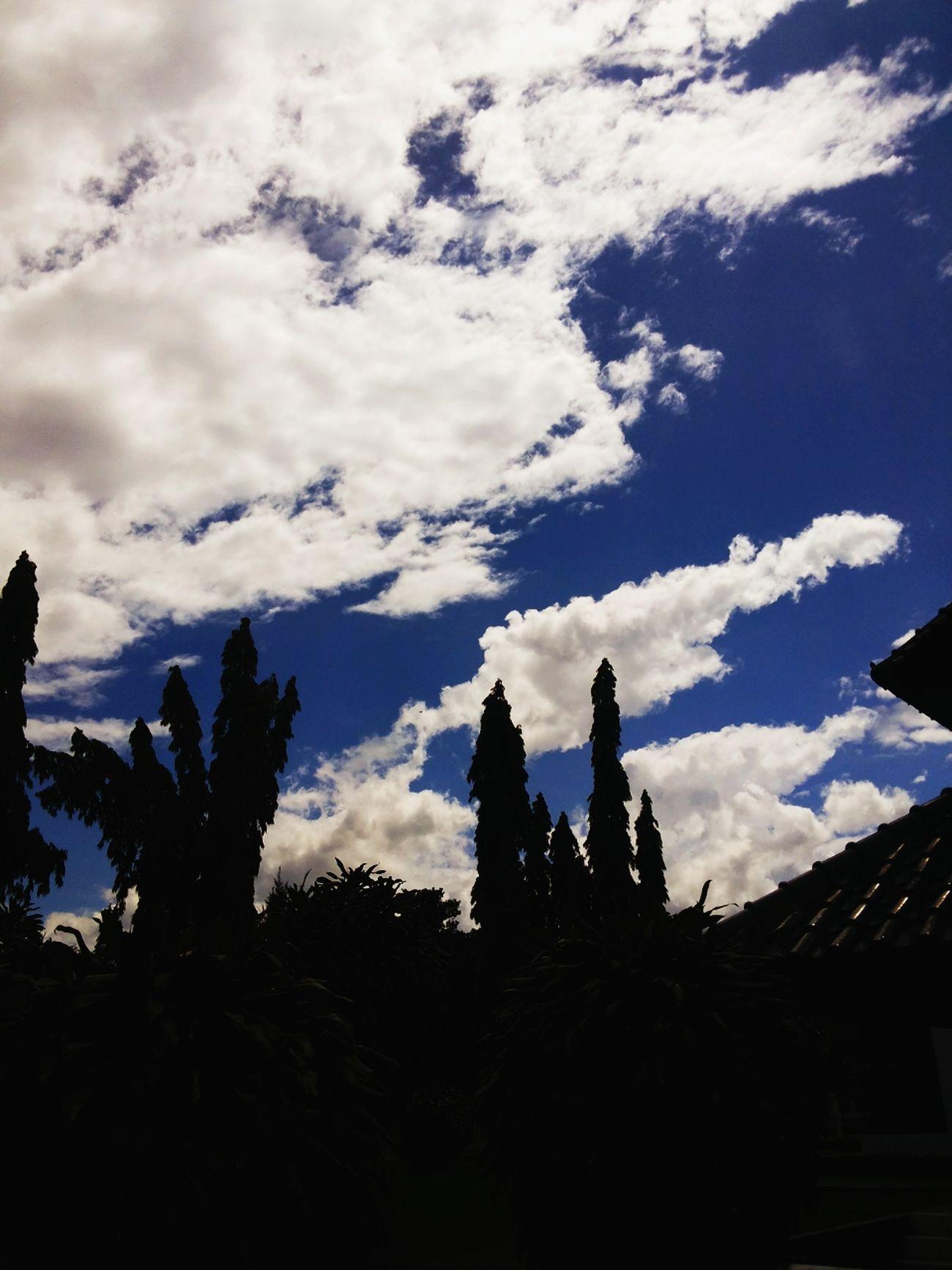 Langit kita selalu biru