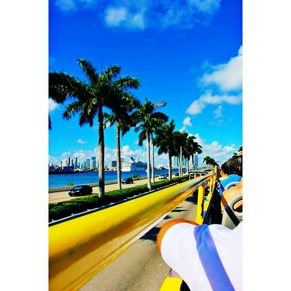 Miami❤ Hanging Out Check This Out Hello World That's Me Taking Photos Relaxing Cheese! Enjoying Life Hi! First Eyeem Photo