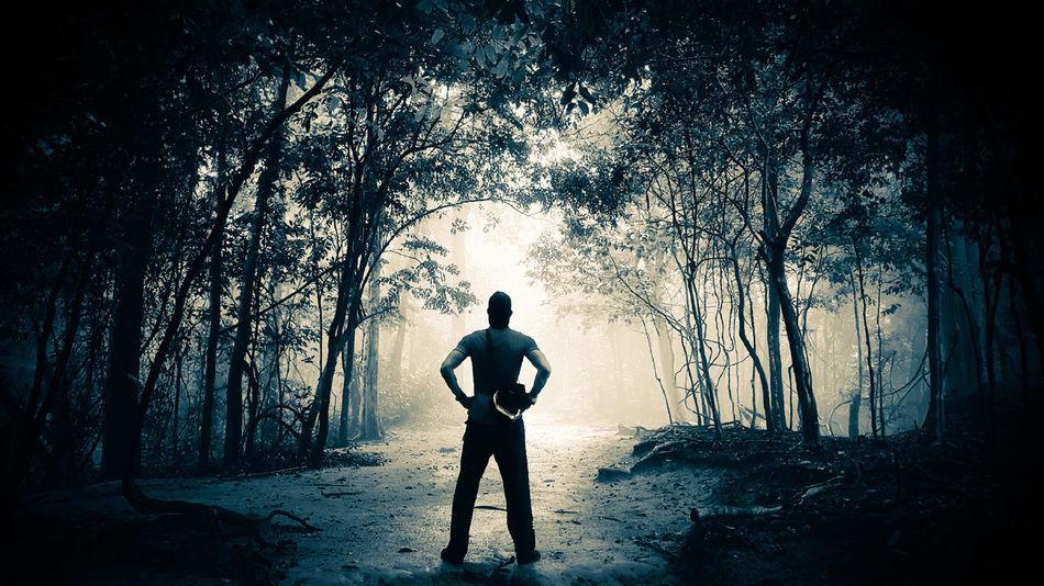 Beautiful stock photos of dark,  Back Lit,  Beauty In Nature,  Dark,  Day
