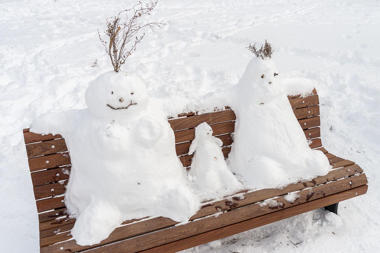 Beautiful stock photos of snowman,  Bench,  Brown,  Close-Up,  Cold Temperature