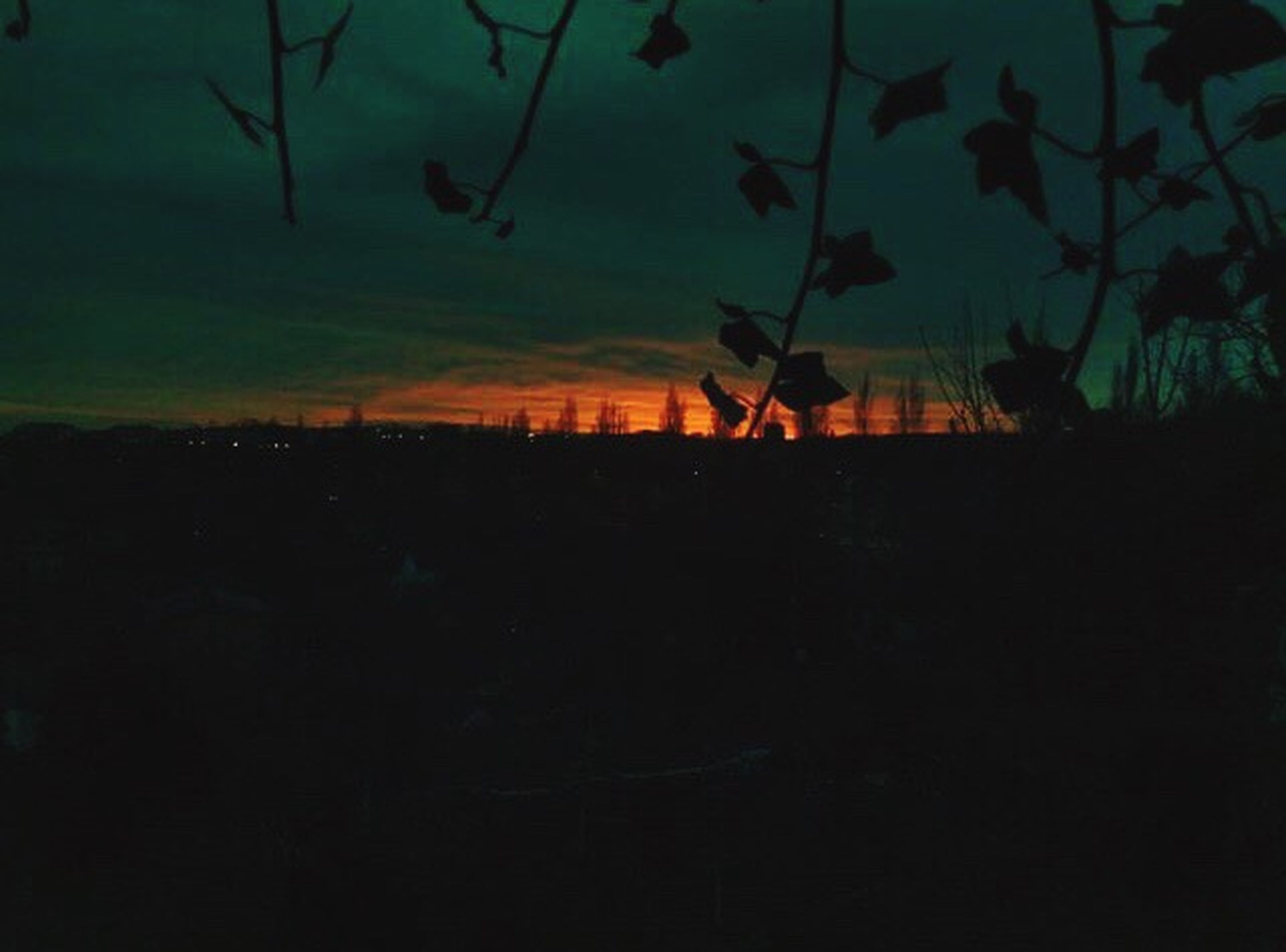 sunset, silhouette, nature, tree, outdoors, beauty in nature, scenics, sky, landscape, no people, night