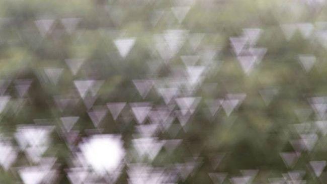 This bokeh made my day!!! Bokehkillers Bokehlicious Bokeh Triangle Shape Mare More To  Come Testing Now More On Www .ioanaporav.co.uk Ioanaporav Photographerlife Sonya7m2 Sonya7 Sonya7r Zeiss Batis Lomographyuk Lomo Lomography Beautiful