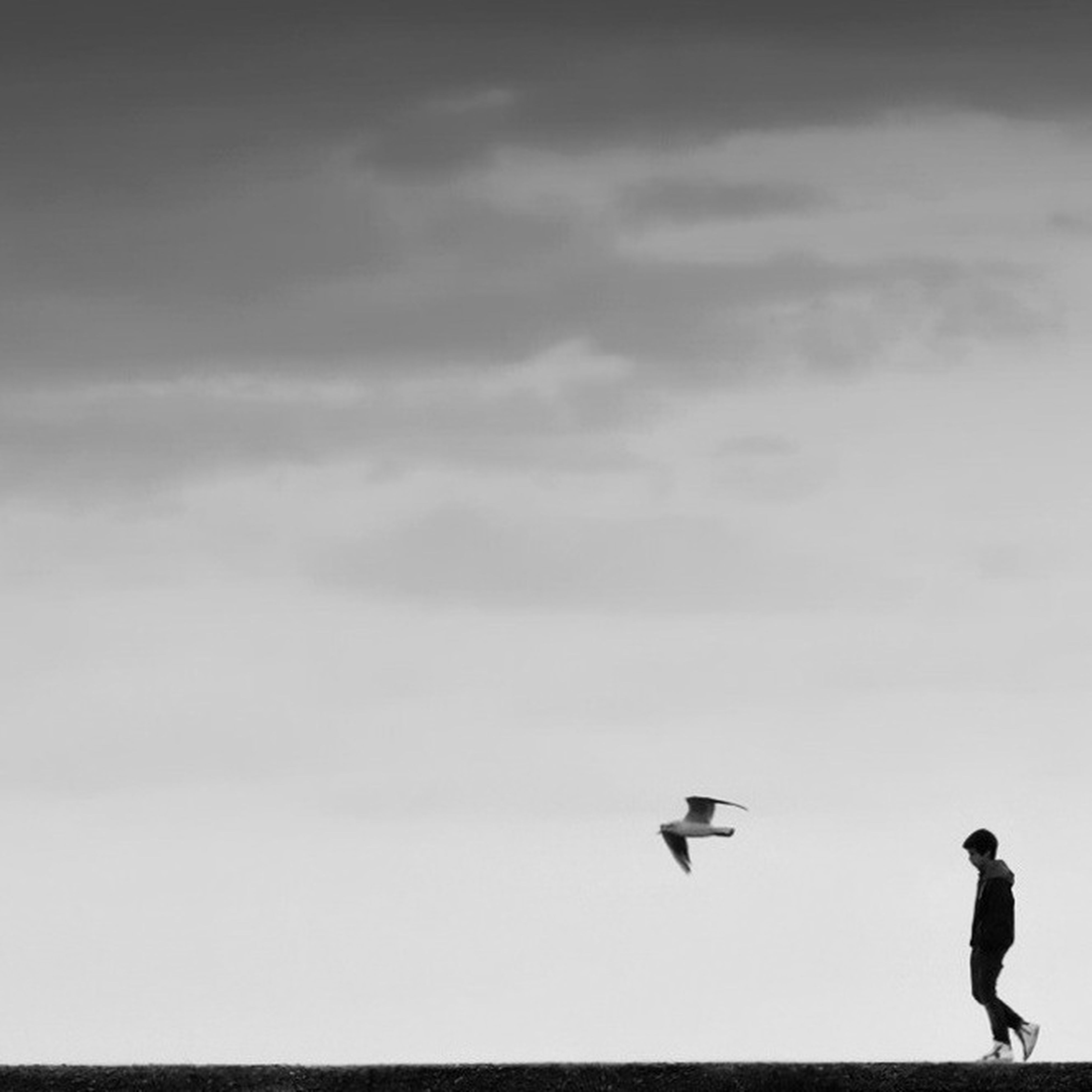 lifestyles, leisure activity, low angle view, sky, men, full length, mid-air, flying, standing, person, cloud - sky, silhouette, outdoors, walking, childhood, fun, day, rear view