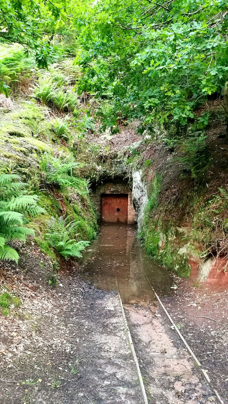 Abandoned mine at Alderley Edge Mine Nature Green Alderley Edge AlderleyEdge Colour Of Life