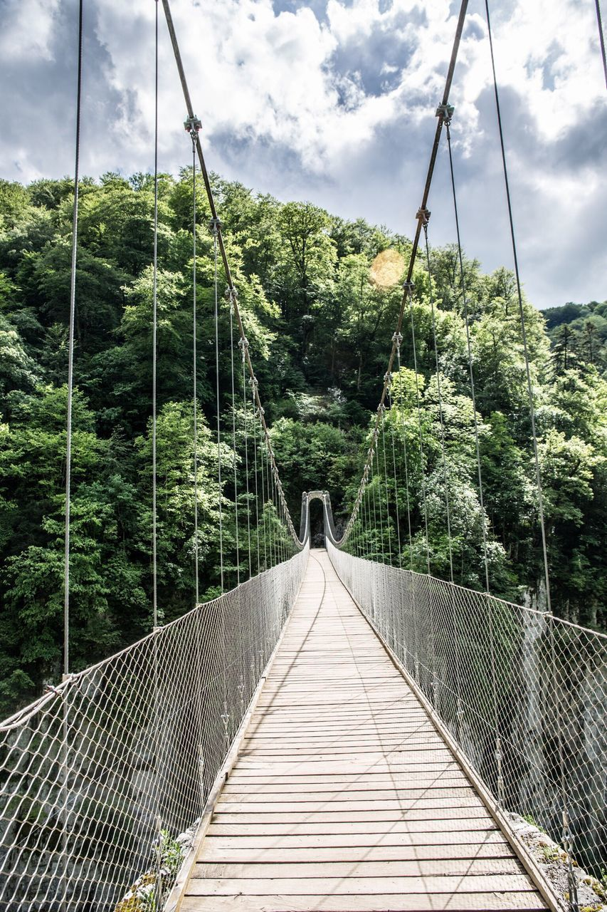 rope bridge, connection, the way forward, footbridge, bridge - man made structure, tree, growth, railing, nature, suspension bridge, day, forest, outdoors, cloud - sky, sky, no people, beauty in nature