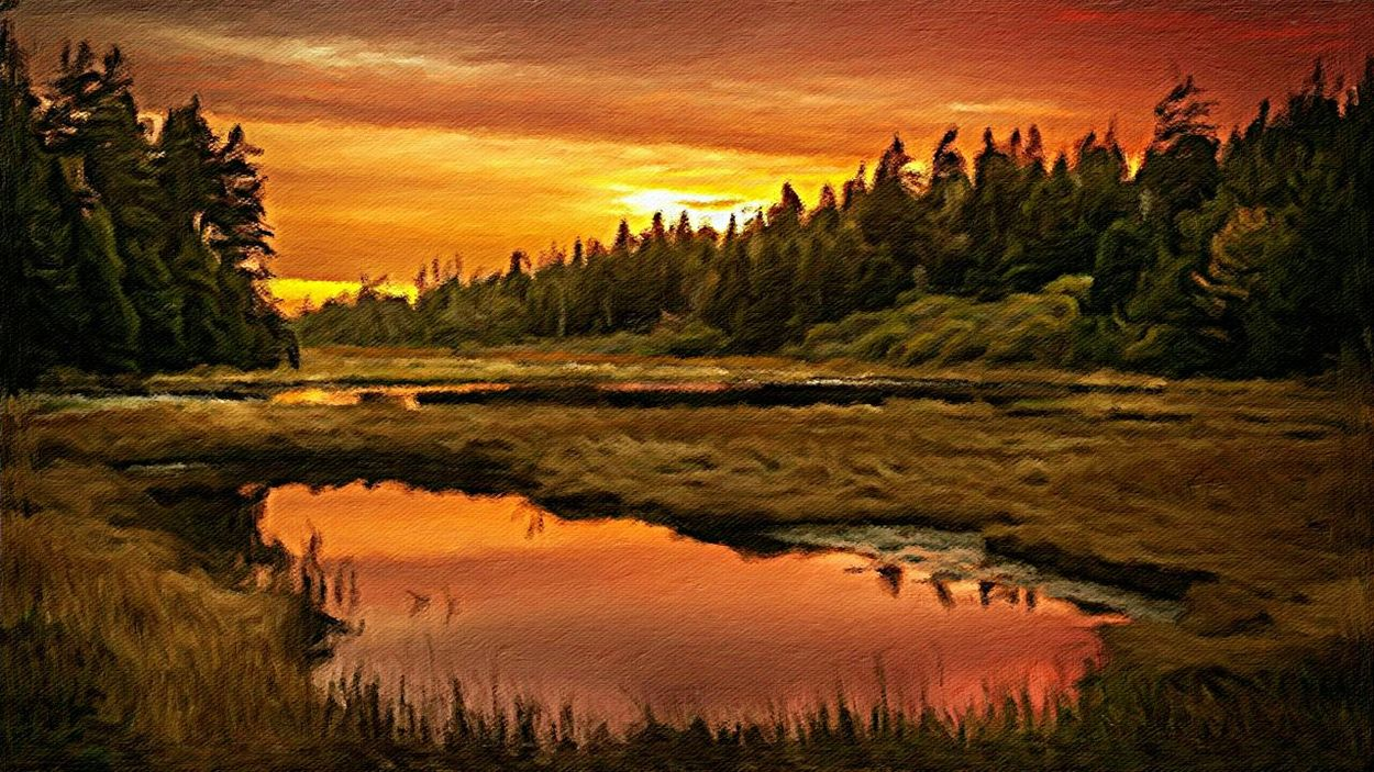 Sonnenuntergang im Harzgebirge . Oil on canvas 100 x 140 cm 2015 Art Painting Landscape Nature Trees Sunset Water Light Forest Evening Pond