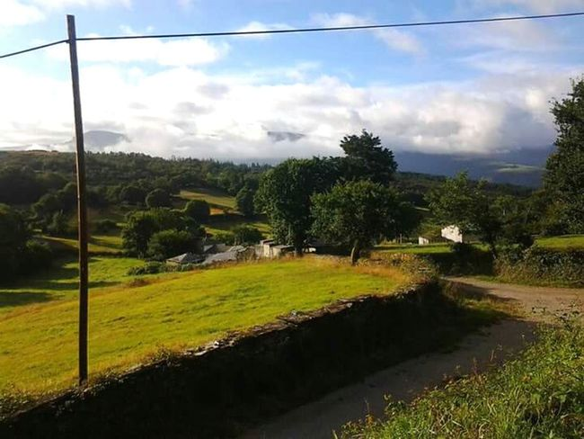 CaminodeSantiago Green Natura Galizia Color Palette