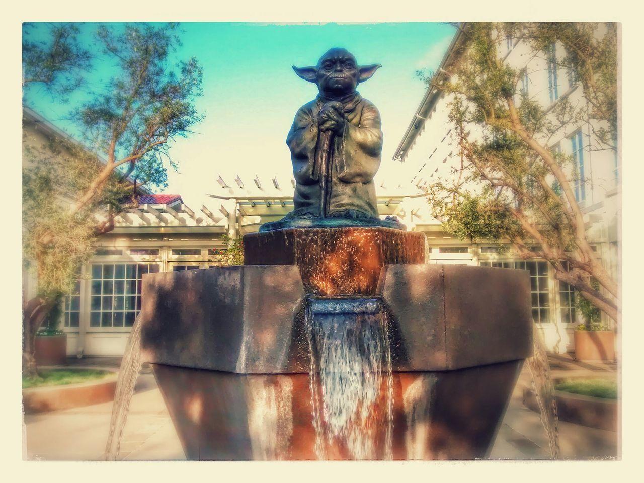 Yoda Fountain IOLSF