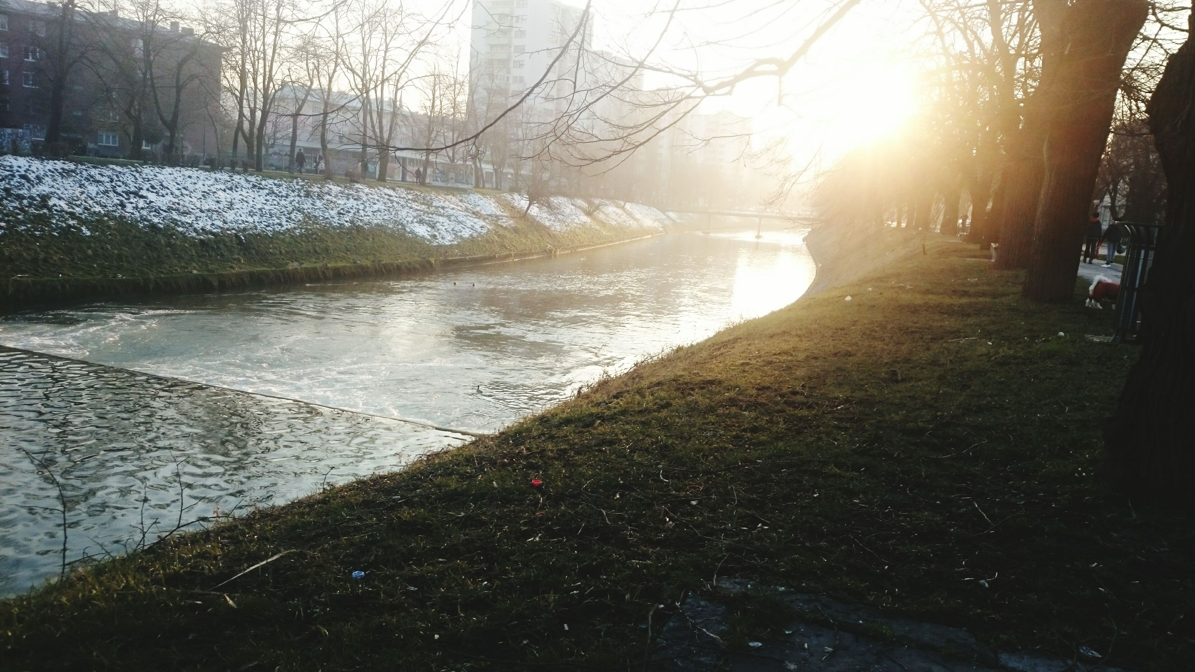 sun, sunlight, water, sunbeam, tree, tranquility, lens flare, tranquil scene, nature, reflection, beauty in nature, scenics, river, sunny, lake, day, outdoors, winter, shadow, bright