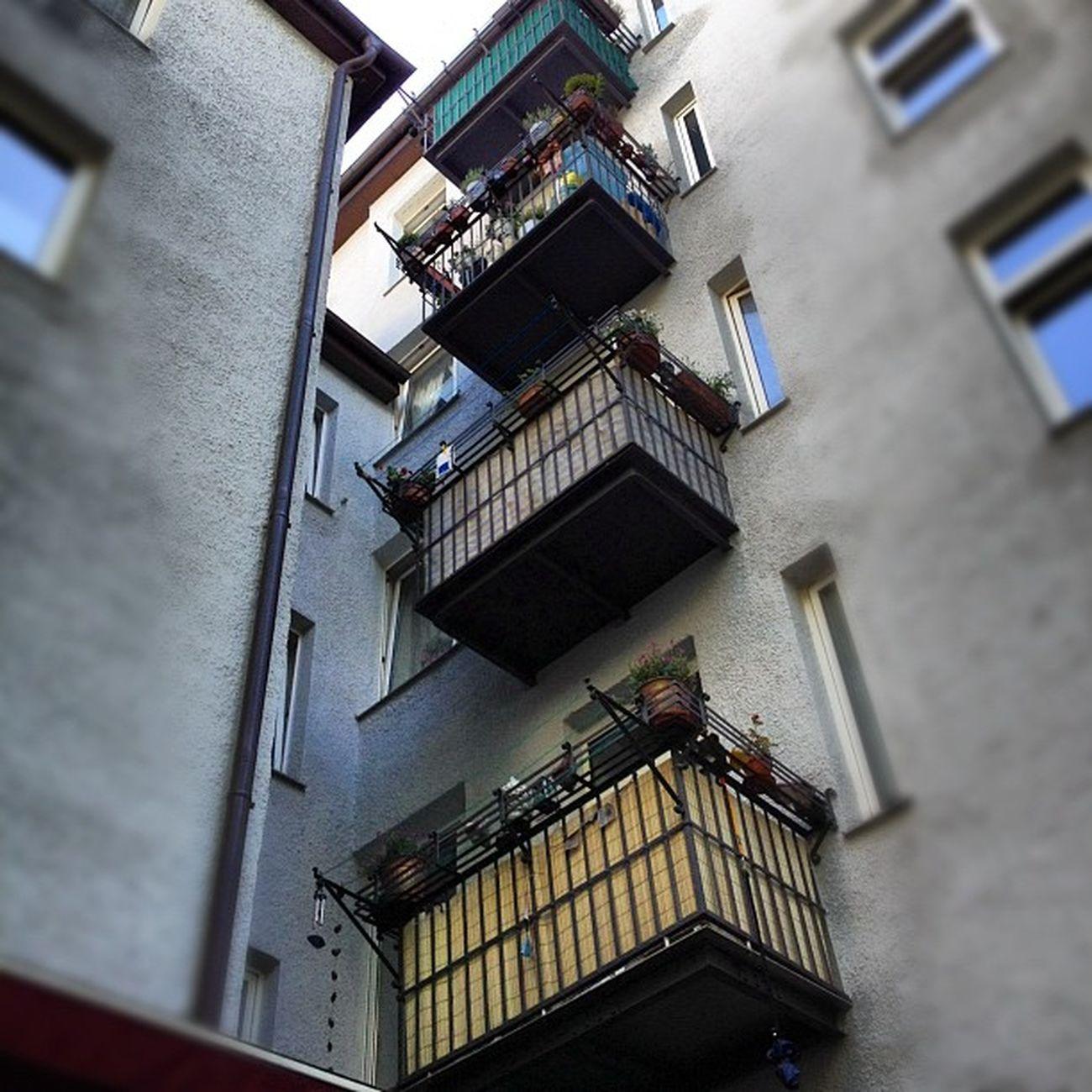#balkon #hinterhof #münchen #munich #pictureoftheday #bavaria Hinterhof Munich München Bavaria Balkon Pictureoftheday