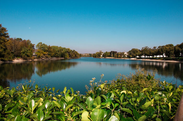 Blue Clear Sky Day Landscape Leaves Nature Nice Day No People Outdoors Picoftheday Reflection Scenics Sky Tranquil Scene Tranquility Tree Water