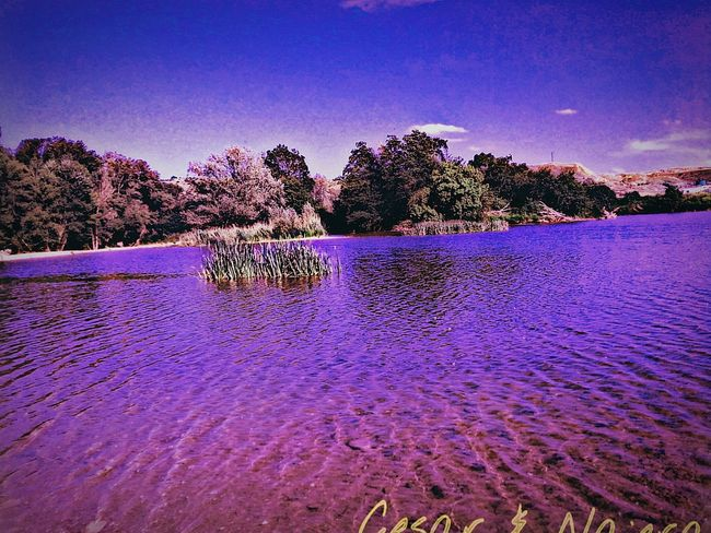 Hello World The Great Outdoors With Adobe EyeEm Nature Lover Eyem Market My Color And Pensamient Whater Reflection Pastel Power Small And Swift Cesar & Najera