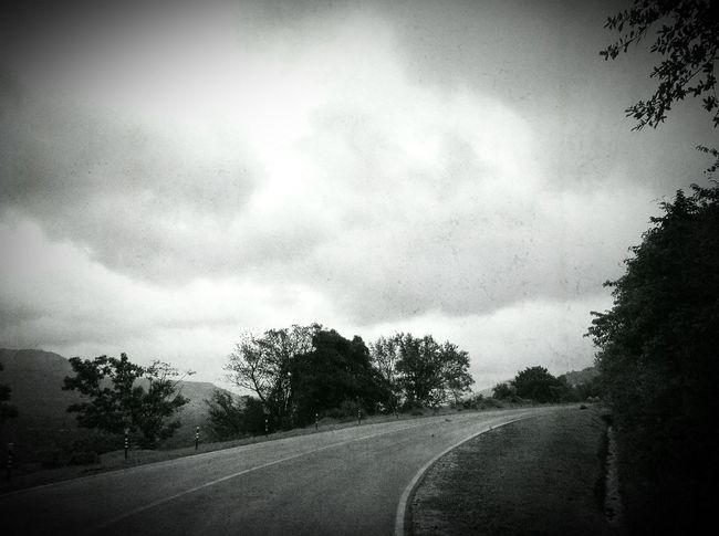 Life is an open road Bend In The Road Day Monsoon Skies On The Road Outdoors Road Sky The Way Forward Travel Tree What Lies Beyond...