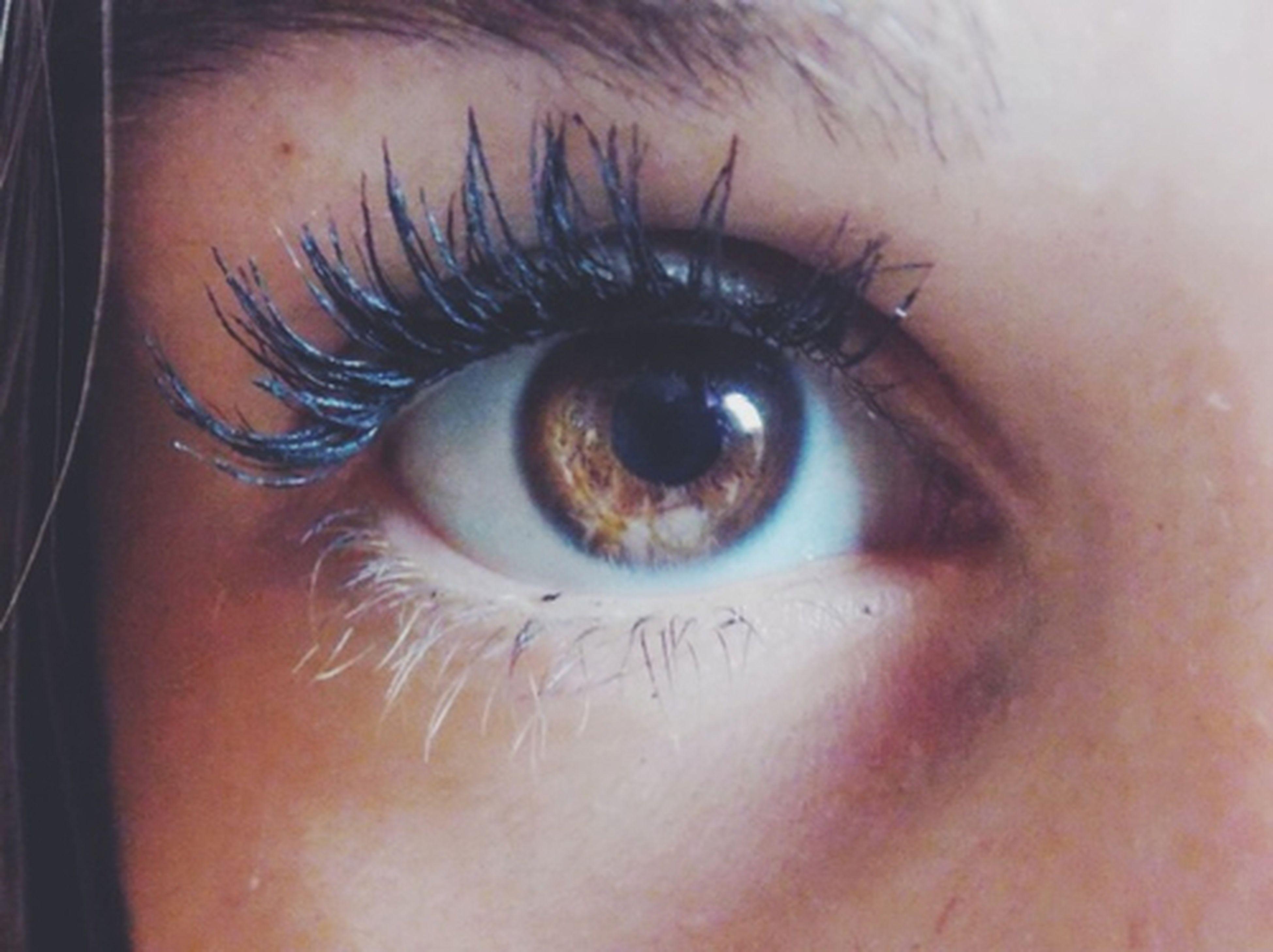 human eye, close-up, eyelash, eyesight, indoors, part of, human skin, sensory perception, extreme close-up, looking at camera, portrait, human face, iris - eye, lifestyles, eyeball, person, unrecognizable person