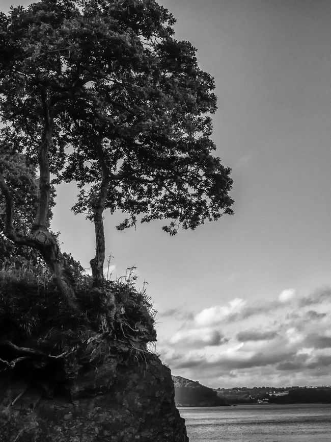 Beauty In Nature Black & White Cliff Cloud - Sky Day Idyllic Low Angle View Nature No People Non-urban Scene Outdoors Rock Rock - Object Rock Formation Scenics Sea Sky Tranquil Scene Tranquility Tree Water