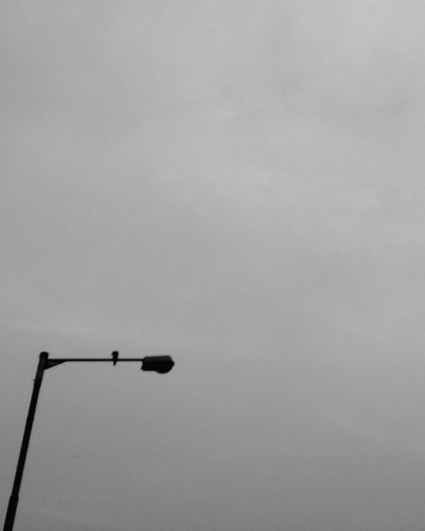 Sky Low Angle View Perching Outdoors Nature No People Abstract Photography Blackandwhite Pigeons Silhouette Streetlights And Sky Adapted To The City