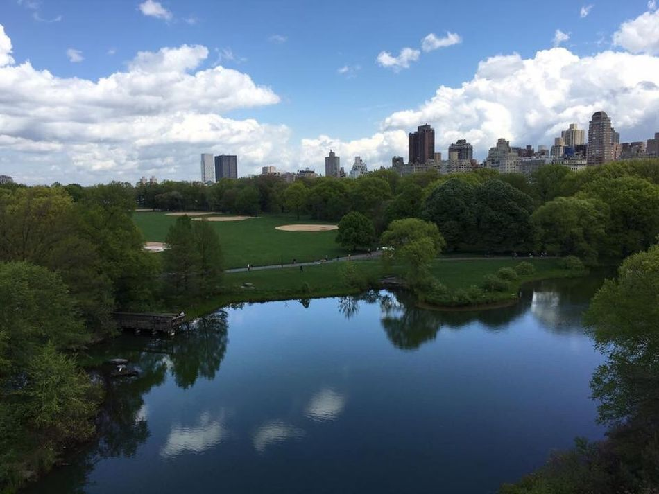 Park Pond Greenery Nature Central Park New York Massive Clouds