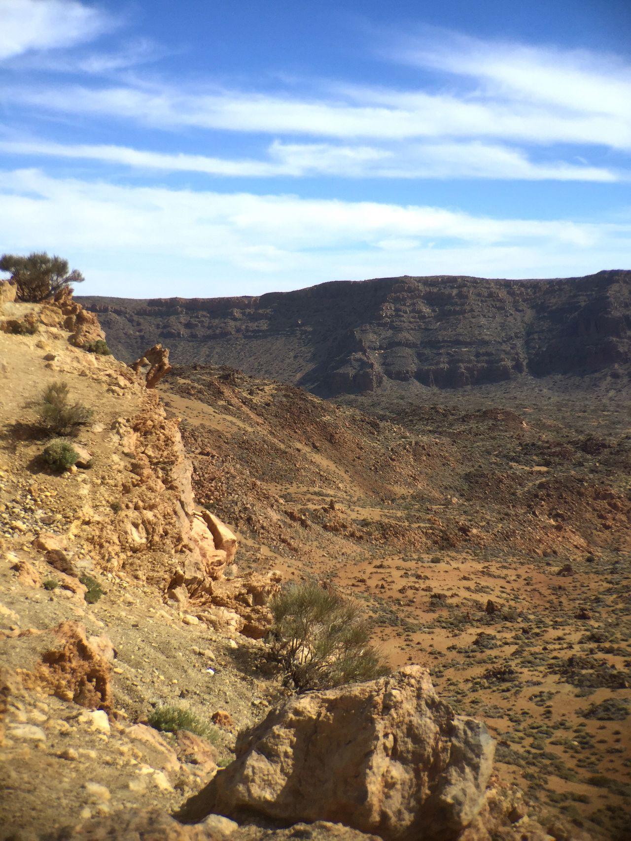 Parque Nacional Del Teide Tenerife Desert Nature Shrubs