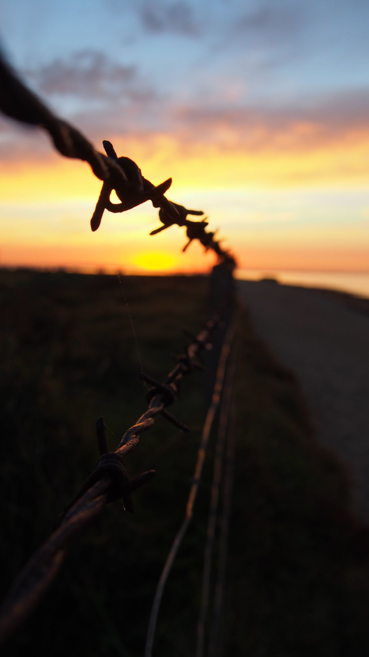 Beautiful stock photos of sunset, focus on foreground, close-up, no people