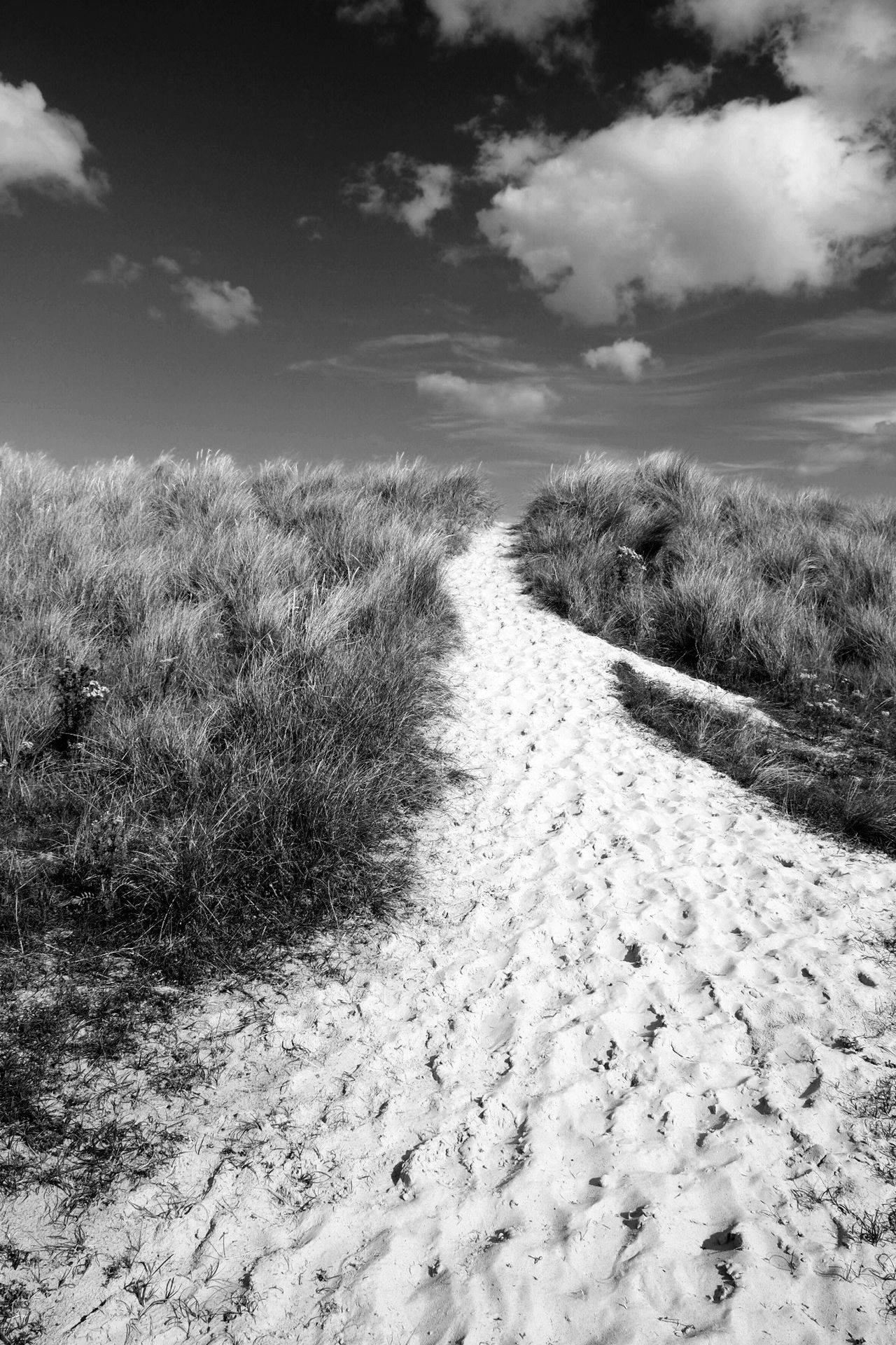 Sand dunes at Southwold, Suffolk, UK. Sand Sand Dune Beach Southwold Sand Dunes Tranquil Scene Suffolk Coast England Tranquility Grass Nature Track Coast Monochrome Stairway To Heaven
